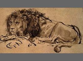 Cape lion, which was painted by Rembrandt H. van Rijin
