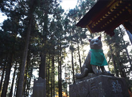 Guardian of Mitsumine Shrine which worship Japanese wolf