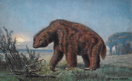 Vintage drawing of Megatherium in 19 century①