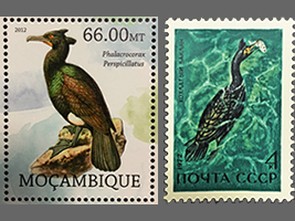 Spectacled cormorant on the stamps of Mozambique & Russia